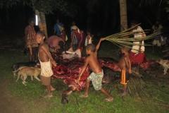 Papua-New-Guinea-(6)