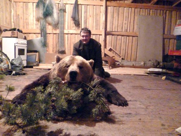 brown-bear-hunt-russia (10)