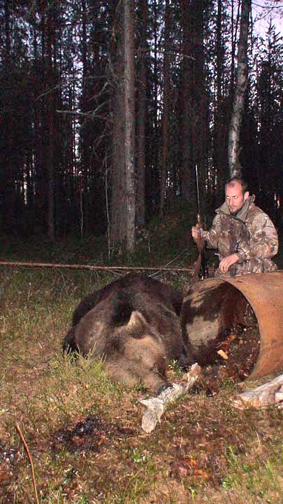 brown-bear-hunt-russia (7)