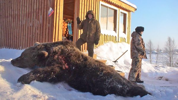 brown-bear-hunt-russia (9)