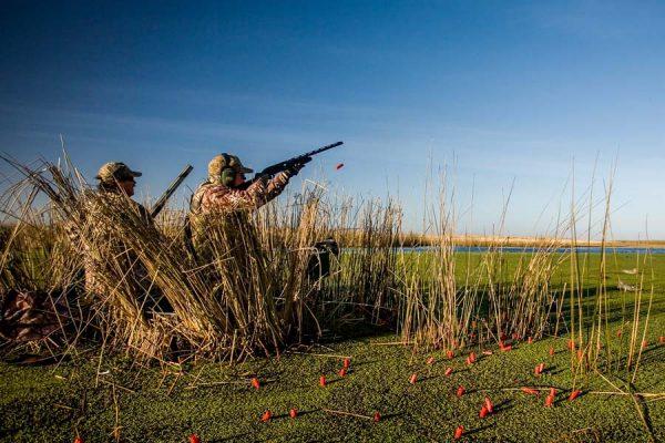 geese-shooting-estonia (4)