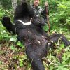 himalayan_bears_khabarovsk3