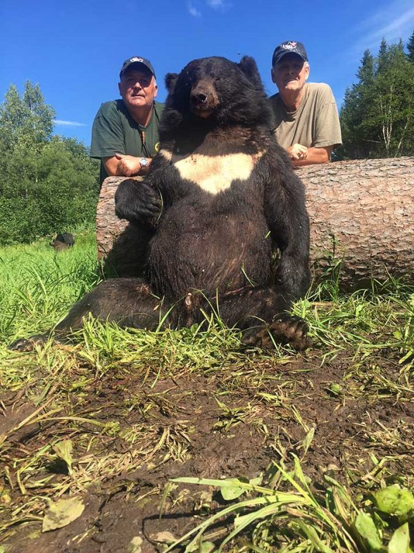 himalayan_bears_khabarovsk5