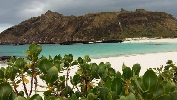 fishing-and-tourism-equador-and-galapagos (7)
