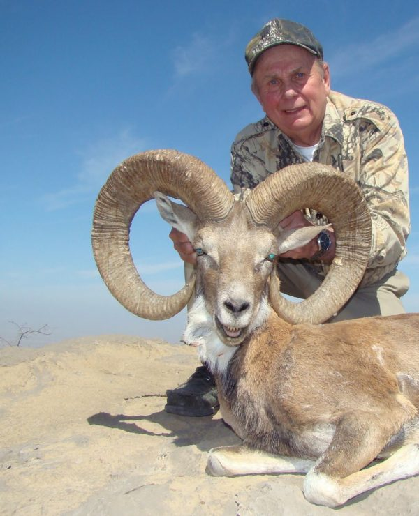 BLANFORD URIAL AND SIND IBEX 1